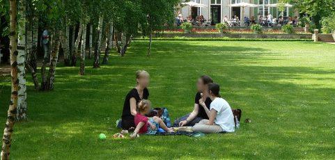 Piknik w Hyde Parku 2015 r.
