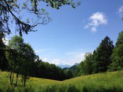 landscape-1232776_1280